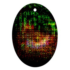 Radar Kaleidoscope Pattern Oval Ornament (two Sides)