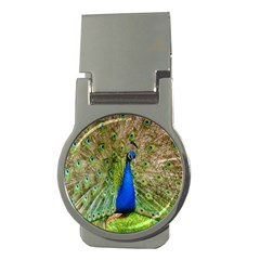 Peacock Animal Photography Beautiful Money Clips (round)