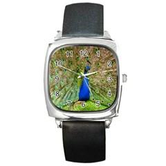 Peacock Animal Photography Beautiful Square Metal Watch