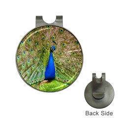 Peacock Animal Photography Beautiful Hat Clips With Golf Markers