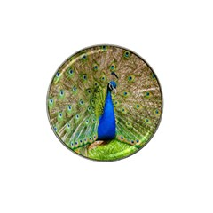 Peacock Animal Photography Beautiful Hat Clip Ball Marker