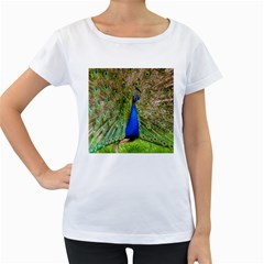 Peacock Animal Photography Beautiful Women s Loose Fit T Shirt (white)