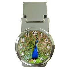Peacock Animal Photography Beautiful Money Clip Watches