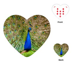 Peacock Animal Photography Beautiful Playing Cards (heart)