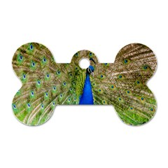 Peacock Animal Photography Beautiful Dog Tag Bone (two Sides)