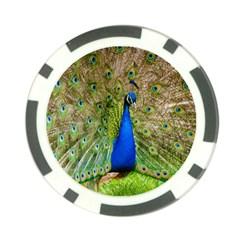 Peacock Animal Photography Beautiful Poker Chip Card Guard
