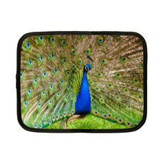 Peacock Animal Photography Beautiful Netbook Case (small)