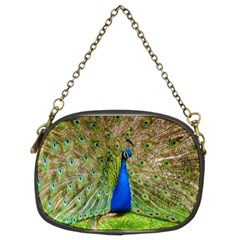 Peacock Animal Photography Beautiful Chain Purses (two Sides)