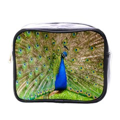 Peacock Animal Photography Beautiful Mini Toiletries Bags