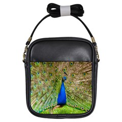Peacock Animal Photography Beautiful Girls Sling Bags