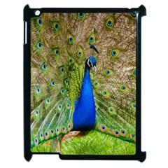 Peacock Animal Photography Beautiful Apple Ipad 2 Case (black)
