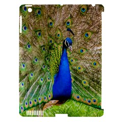 Peacock Animal Photography Beautiful Apple Ipad 3/4 Hardshell Case (compatible With Smart Cover)