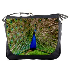 Peacock Animal Photography Beautiful Messenger Bags