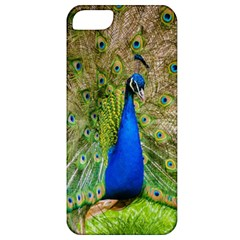 Peacock Animal Photography Beautiful Apple Iphone 5 Classic Hardshell Case