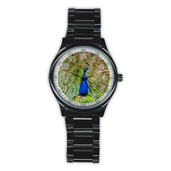Peacock Animal Photography Beautiful Stainless Steel Round Watch