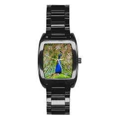 Peacock Animal Photography Beautiful Stainless Steel Barrel Watch
