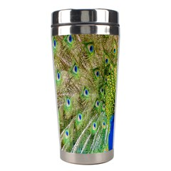 Peacock Animal Photography Beautiful Stainless Steel Travel Tumblers