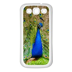 Peacock Animal Photography Beautiful Samsung Galaxy S3 Back Case (white)