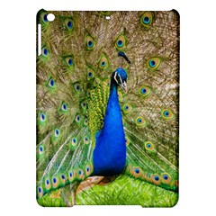 Peacock Animal Photography Beautiful Ipad Air Hardshell Cases
