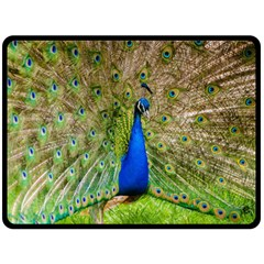 Peacock Animal Photography Beautiful Double Sided Fleece Blanket (large)
