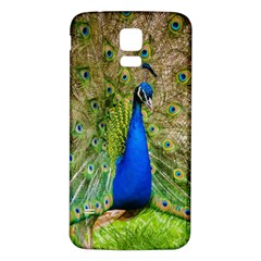 Peacock Animal Photography Beautiful Samsung Galaxy S5 Back Case (white)