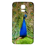 Peacock Animal Photography Beautiful Samsung Galaxy S5 Back Case (White) Front