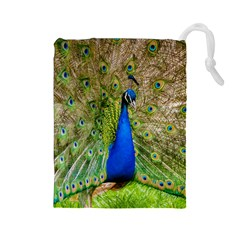 Peacock Animal Photography Beautiful Drawstring Pouches (large)