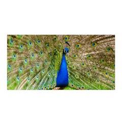 Peacock Animal Photography Beautiful Satin Wrap