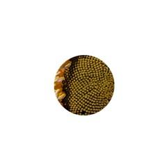 Sunflower Bright Close Up Color Disk Florets 1  Mini Magnets