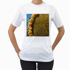 Sunflower Bright Close Up Color Disk Florets Women s T Shirt (white) (two Sided)