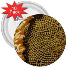 Sunflower Bright Close Up Color Disk Florets 3  Buttons (10 Pack)