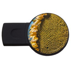 Sunflower Bright Close Up Color Disk Florets USB Flash Drive Round (2 GB)
