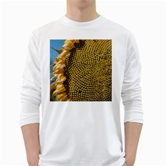 Sunflower Bright Close Up Color Disk Florets White Long Sleeve T Shirts