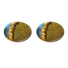 Sunflower Bright Close Up Color Disk Florets Cufflinks (oval)