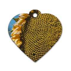 Sunflower Bright Close Up Color Disk Florets Dog Tag Heart (one Side)