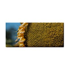 Sunflower Bright Close Up Color Disk Florets Cosmetic Storage Cases