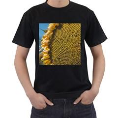 Sunflower Bright Close Up Color Disk Florets Men s T Shirt (black)
