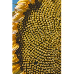 Sunflower Bright Close Up Color Disk Florets 5 5  X 8 5  Notebooks