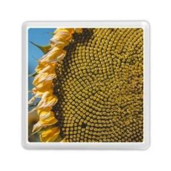 Sunflower Bright Close Up Color Disk Florets Memory Card Reader (square)