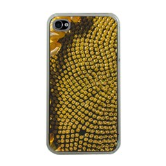 Sunflower Bright Close Up Color Disk Florets Apple Iphone 4 Case (clear)