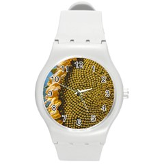 Sunflower Bright Close Up Color Disk Florets Round Plastic Sport Watch (m)
