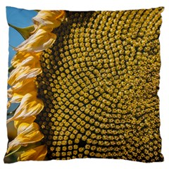 Sunflower Bright Close Up Color Disk Florets Large Cushion Case (one Side)