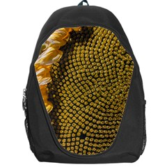 Sunflower Bright Close Up Color Disk Florets Backpack Bag