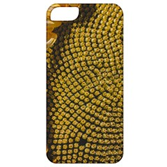 Sunflower Bright Close Up Color Disk Florets Apple Iphone 5 Classic Hardshell Case