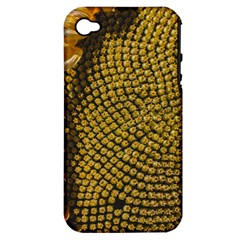 Sunflower Bright Close Up Color Disk Florets Apple Iphone 4/4s Hardshell Case (pc+silicone)