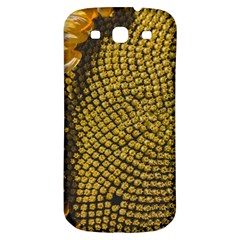 Sunflower Bright Close Up Color Disk Florets Samsung Galaxy S3 S Iii Classic Hardshell Back Case