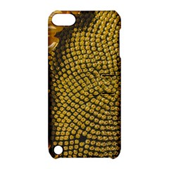Sunflower Bright Close Up Color Disk Florets Apple Ipod Touch 5 Hardshell Case With Stand
