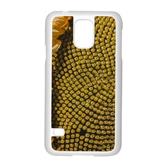 Sunflower Bright Close Up Color Disk Florets Samsung Galaxy S5 Case (white)