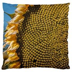 Sunflower Bright Close Up Color Disk Florets Standard Flano Cushion Case (one Side)