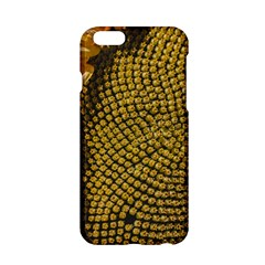 Sunflower Bright Close Up Color Disk Florets Apple Iphone 6/6s Hardshell Case